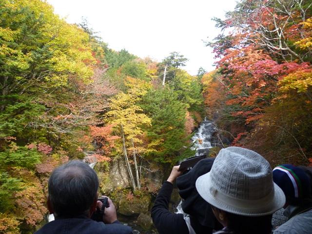 竜頭の滝151010