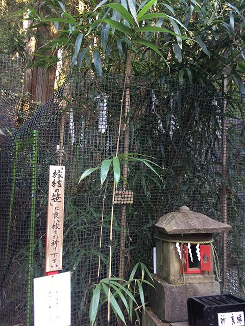 二荒山神社縁結笹.jpg
