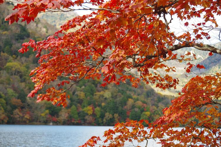 湯の湖2016.10.18.jpg