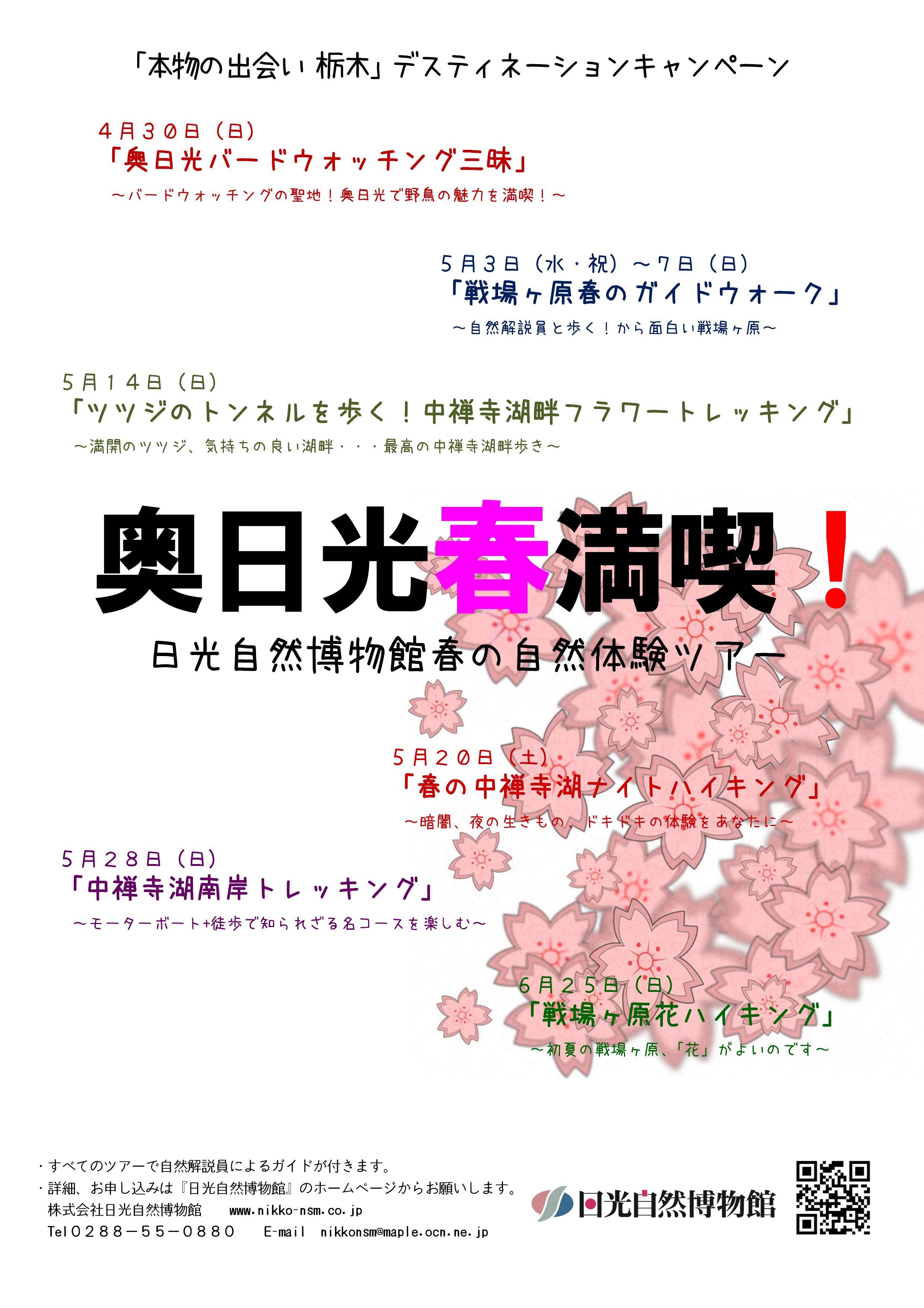 日光自然館春のイベント.jpg