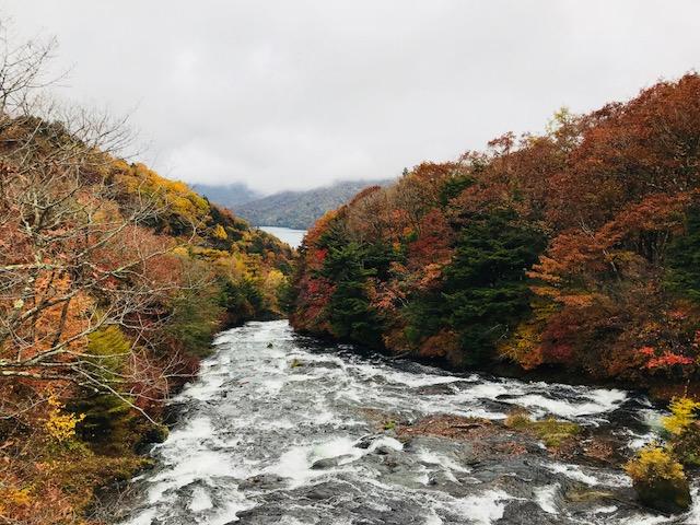 竜頭の滝滝上.jpg