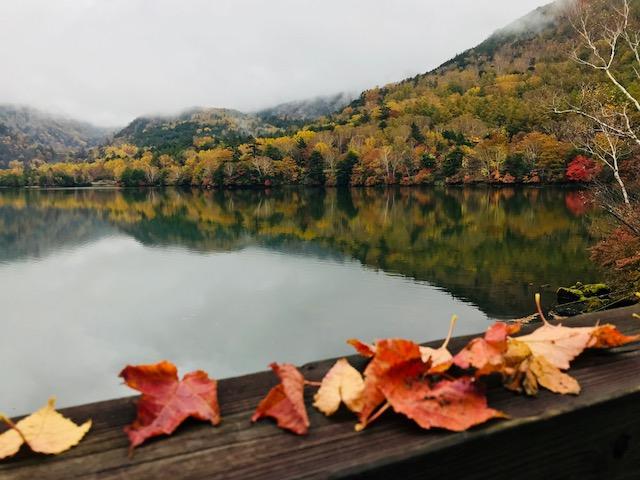 湯の湖4.jpg