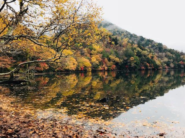 湯の湖6.jpg