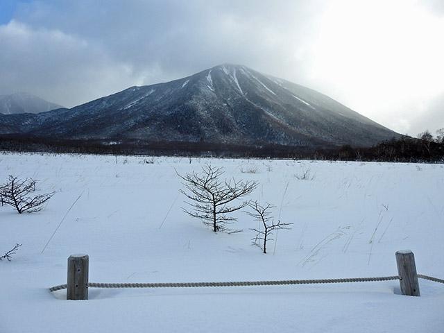 雪景色 0117 17  戦場ヶ原 (30).jpg