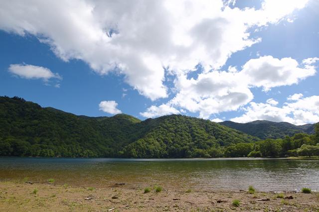 180818西の湖.jpg