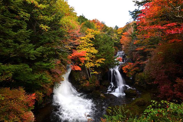 181008竜頭の滝-640.jpg