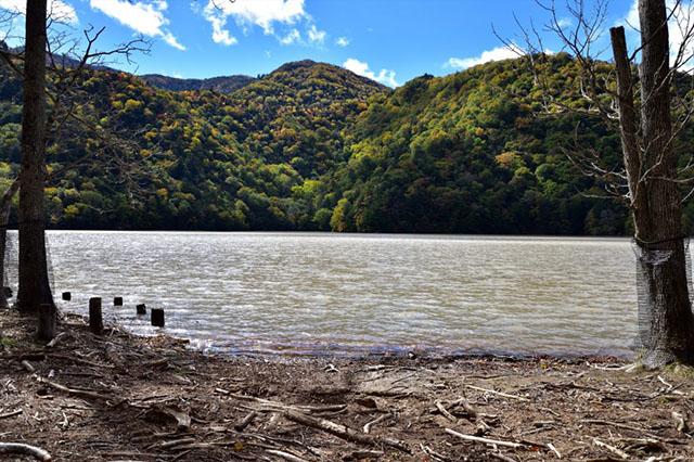 181007西の湖-640.jpg