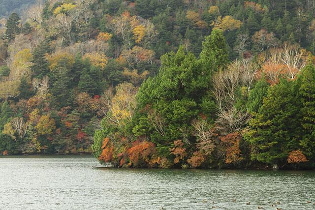 181019湯の湖.jpg