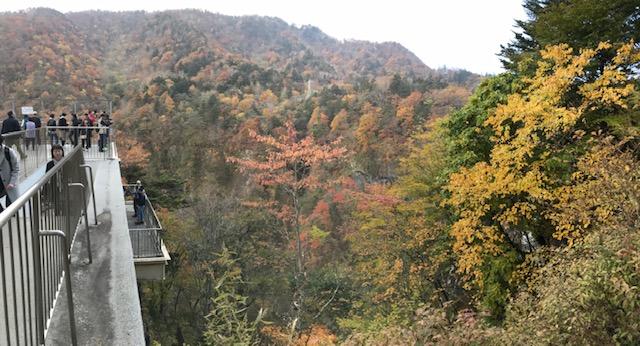 1025華厳の滝.jpg