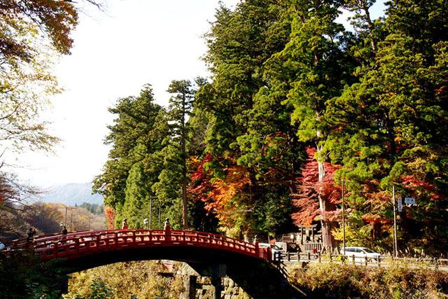 181114神橋-640.jpg