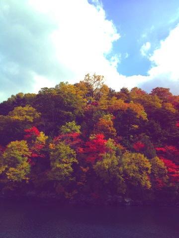 湖上からの紅葉