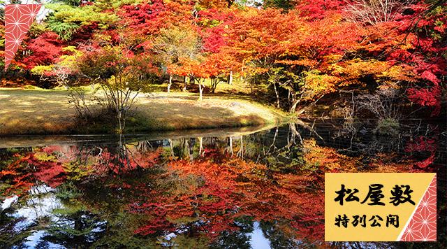 特別公開広大な庭園で紅葉散歩~松屋敷~