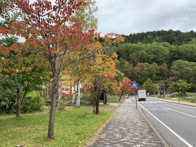 中禅寺湖周辺紅葉状況について
