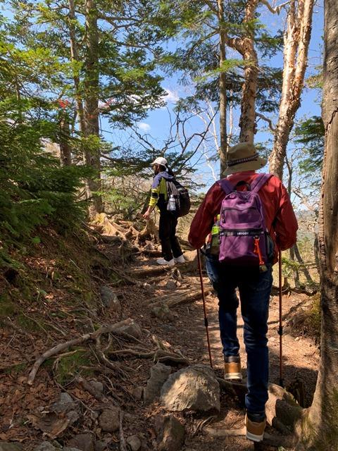 日光白根山へ登山してきました!